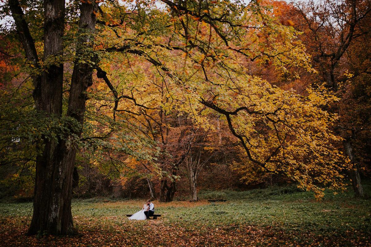 Sesja Ślubna Ojców, Ojcowski Park Narodowy jesienią Kraków, Duet Fotografów, Sesja Ślubna z psem z pieskiem